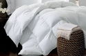 kathy ireland Home Essentials White Down Comforter