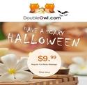 DoubleOwl:60分钟全身按摩仅需$9.99