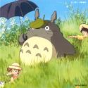 Totoro for Sale