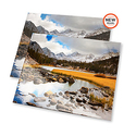 Free 101 4x4 or 4x6 Prints