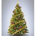 圣诞树集体减肥日:低至4折