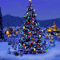 Tired Of The Tree? Alternative Ways To Spend Your Christmas