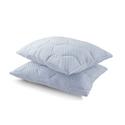 Summer Cooling Gel Reversible Memory Foam Loft Pillow (2-Pack)