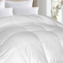 1,000 Thread Count Egyptian Cotton Oversized Comforter from $69.99