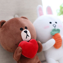 LINE FRIENDS Selections