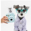 Fuji instax mini 8 Fujifilm instant Film Camera