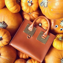Shopbop: 30% OFF Sophie Hulme Handbags and More