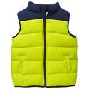 Gymboree Boy's Puffer Vest
