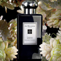 Spring: 20% OFF All Jo Malone Fragrance