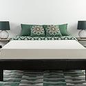Zinus 8英寸绿茶记忆海绵床垫
