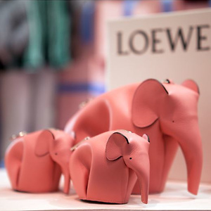 Farfetch: 10% OFF Loewe bags