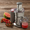 Breville RM-800JEXL Juice Extractor (Certified Remanufactured)