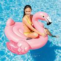 Intex Flamingo Inflatable Ride-On