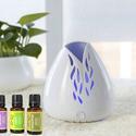 ZAQ Portable Aromatherapy Essential Oil Fan Diffuser with Oils