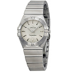 Brushed Steel Ladies Watch