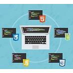 The Web Developer