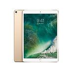 10.5寸iPad Pro (256GB)