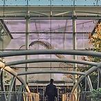 洛杉矶自然历史博物馆