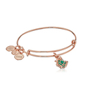 Alex and Ani Frog Prince Charm Bracelet
