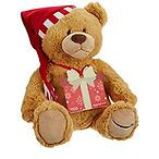 Free 2017 Teddy Bear