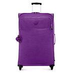 Large Rolling Luggage