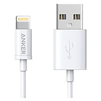 Anker 3ft Lightning Cable