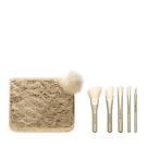Advanced Brush Kit