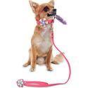 Hipat Soft Velvet Dog Collar Leash Set for Puppy Small Dog