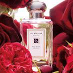 红玫瑰香水