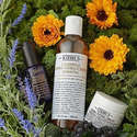 Belk 15% Off All Kiehl's Beauty Products