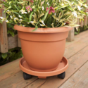 "Bloem Ariana Self Watering Planter, 6"", Calypso (AP0627), 6-Inch, ONLY $1.18"