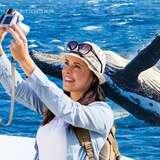 洛杉矶 2小时出海观鲸之旅 低至5折