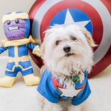 PETCO: Marvel Pet Fan Collection
