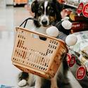 Petco 全场宠物食品、用品、医药品热卖