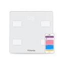 Yolanda Precision Smart Body Scale