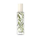 柳树和琥珀香水 30ml